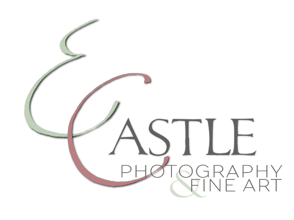 E. Castle Artist – Texas Hill Country Photographer and Fine Artist logo